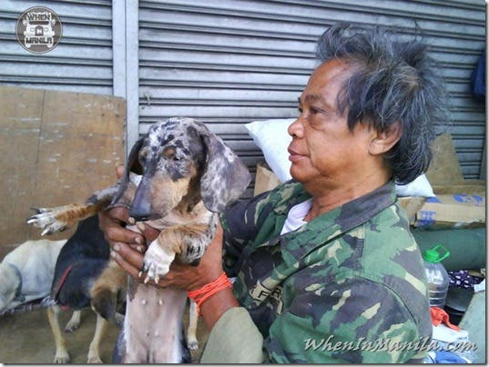 Mang-Rudy-Project-animal-Lover-Homeless-Man-Adopts-Dogs-Stray-Cats-WhenInManila-Manila-Philippines-1