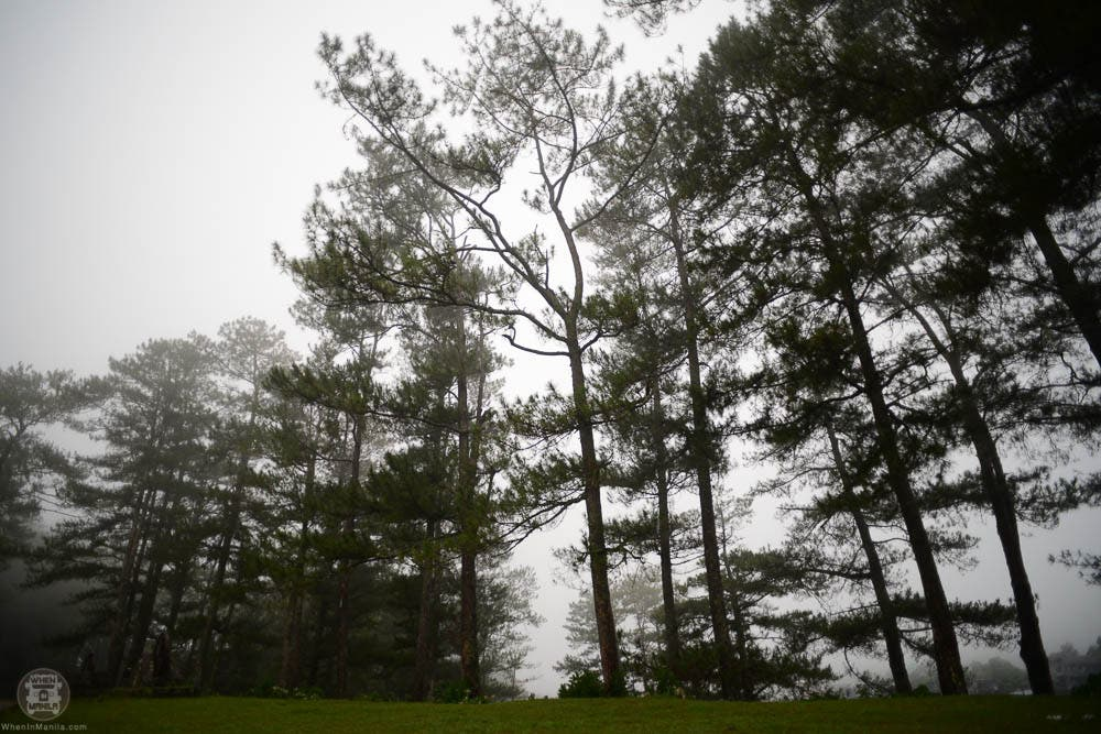 when-in-manila-things-to-do-in-sagada-where-to-stay-travel-phorography-philippines-hanging-coffins-1558