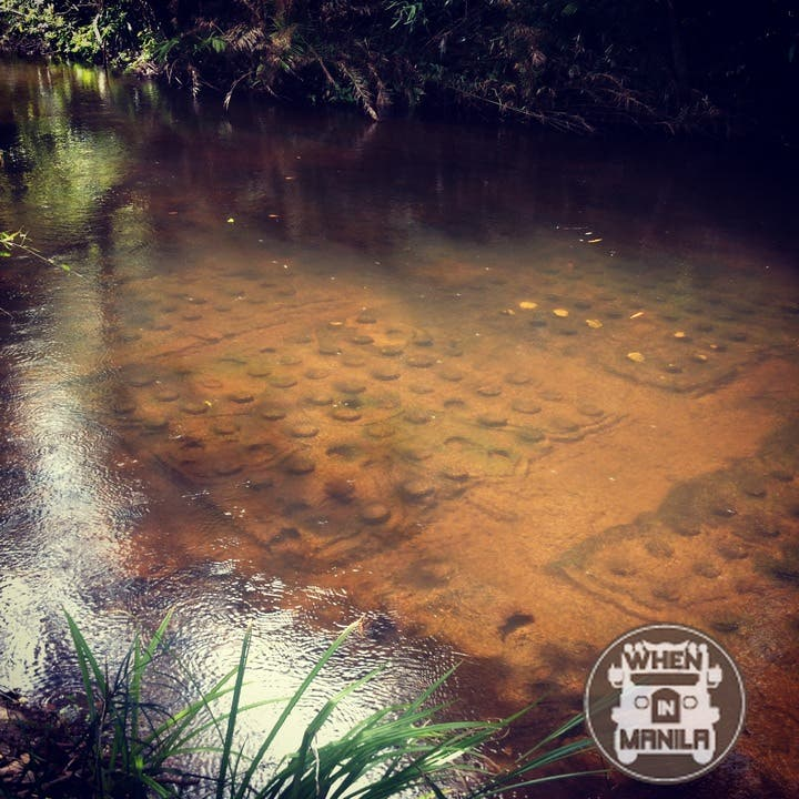 The carvings of the River of Thousand Lingas