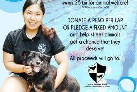 Ultraswim 2 Fundraising Event by CARA for animal welfare in the Philippines