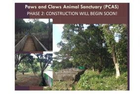 paws and claws animal sanctuary - Philippine Animal Rescue Team
