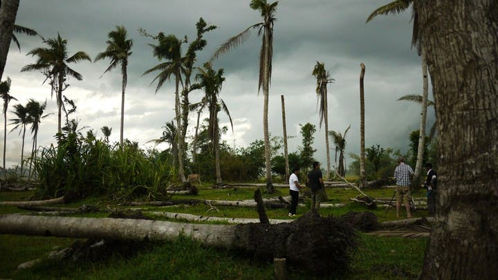 Trey Farley and Agriculture Secretary Alcala looked closely on the plight of the coconut farmers as well as in the clearing and cutting down of the felled trees. A total of 33 million coconut trees destroyed in Haiyan-ravaged areas, around seven million of them in Tacloban.