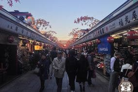 Arigatou, Tokyo: How to Maximize a Trip to Japan on a Limited Budget
