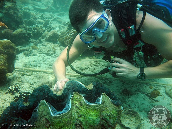 Marc Nelson with a Giant Clam