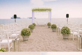 beach wedding dream wedding
