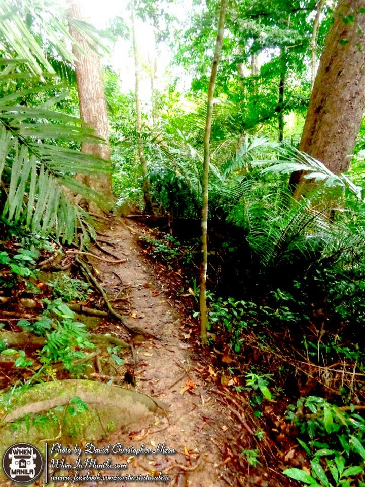 Mt. Makiling's Natural Wonders - Our Perfect Valentine's Day Getaway! 003