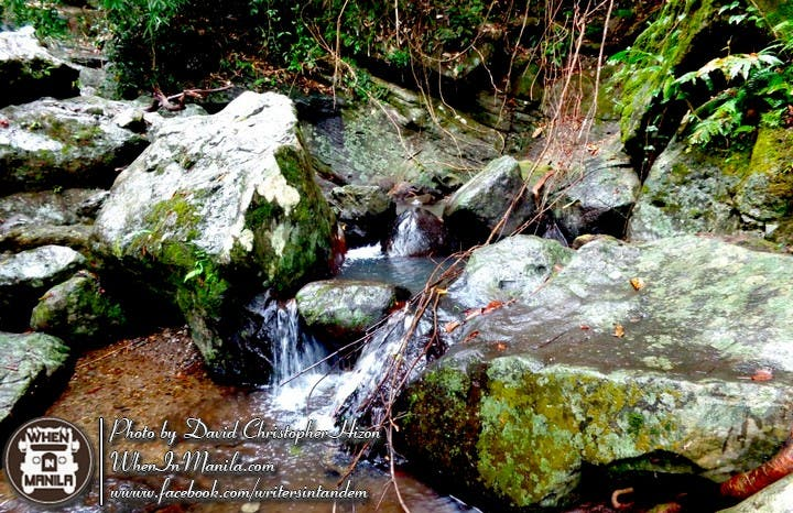 Mt. Makiling's Natural Wonders - Our Perfect Valentine's Day Getaway! 004