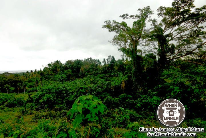 Mt. Makiling's Natural Wonders - Our Perfect Valentine's Day Getaway! 012