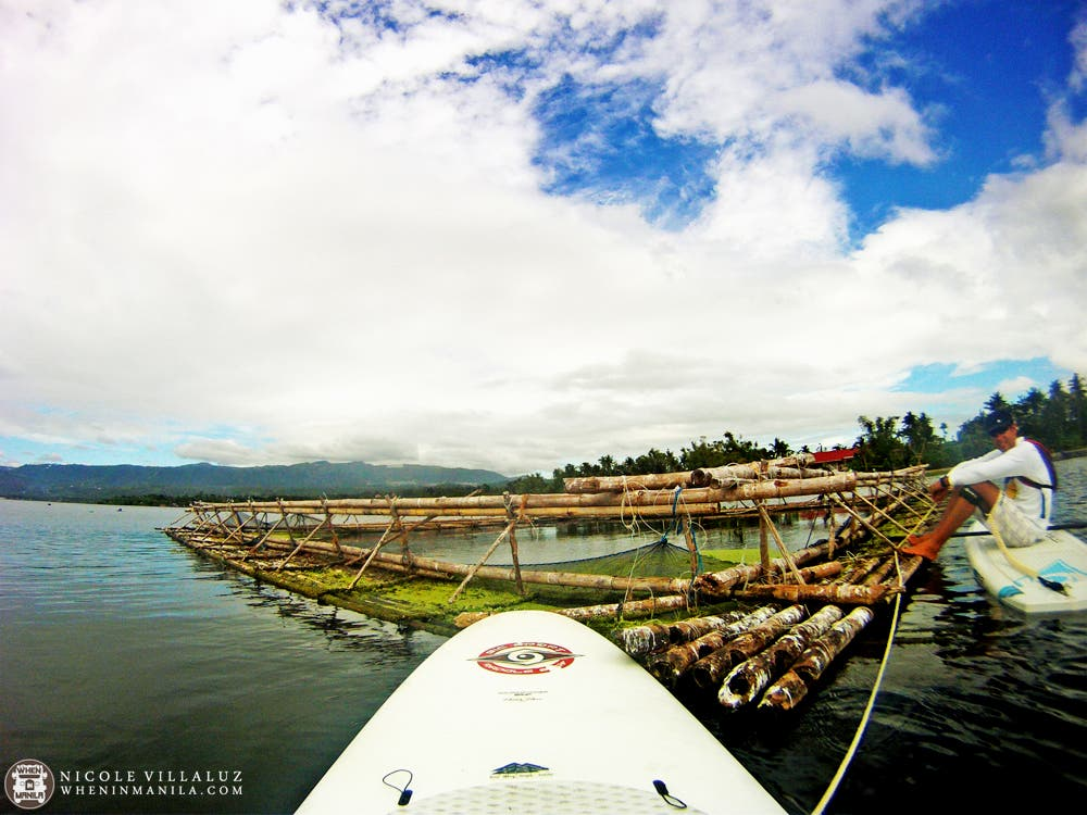 Taal Lake Tour SUP Experience