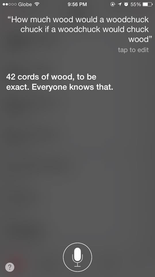 Funny-things-to-ask-siri-14