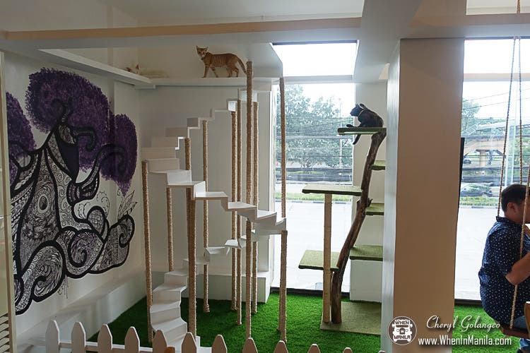 The-Cat-House-Cafe-07