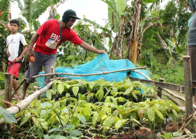 CROWDFUNDING Campaign: Support local cacao farmers in Davao!