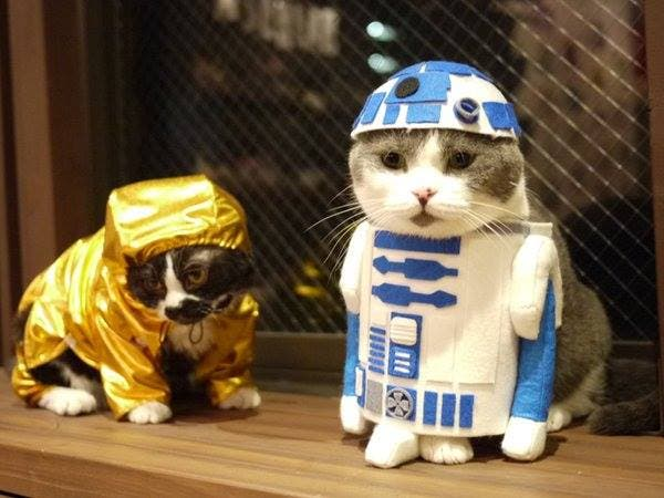 C3P and R2D2