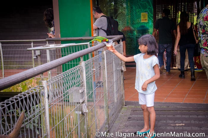 Jurong Bird Park Night Safari Singapore When in Manila Mae Ilagan (62 of 107)