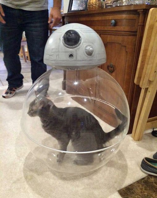 LOOK So This is How Star Wars' BB-8 Really Works