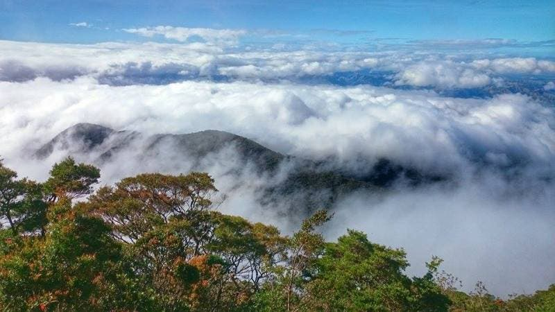 Paasa Peak Sea of Clouds (1)