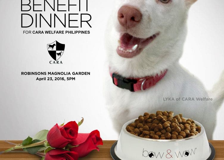 BOW & WOW BENEFIT DINNER FOR CARA WELFARE PHILIPPINES April 23 2016