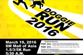 The Pet Express Doggie Run 2016