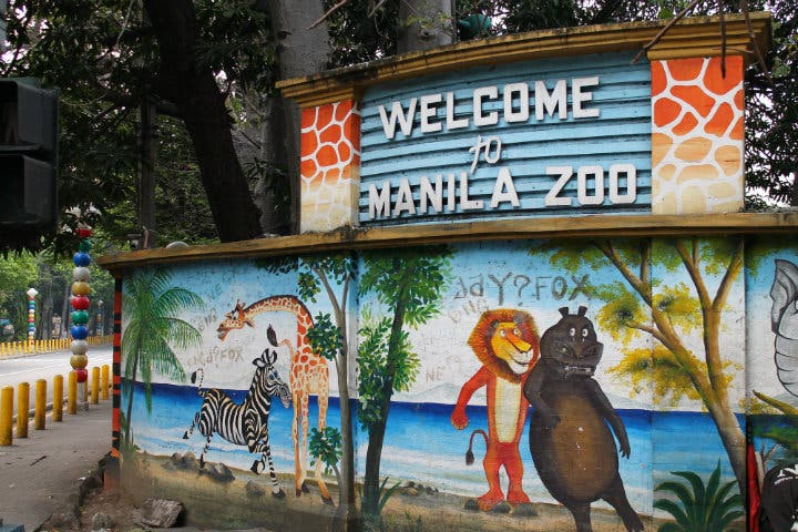 The Manila Zoo Will be Renovated, Will Become World-Class