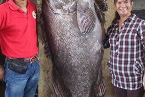 LOOK: Seven-Foot Fish Caught in Negros Occidental