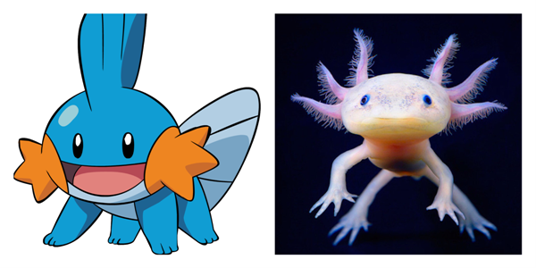 19 Pictures Of Pokémon And Their Real Life Counterparts When In Manila