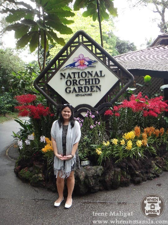 The National Orchid Garden SG (1)