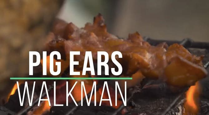 Pig Ears Walkman