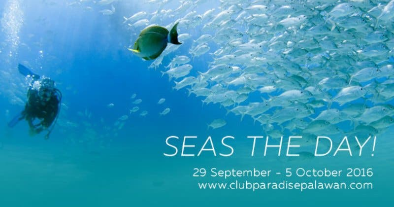 club-paradise-seas-the-day