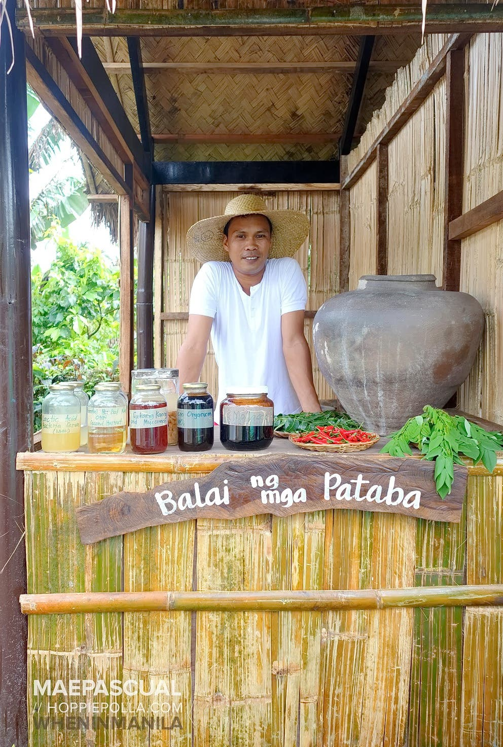 when-in-manila_hoppiepolla_nurture-farmacy_09_home made organic pesticides and fertilizers