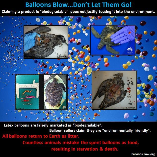 Damage caused by balloon and sky lantern releases