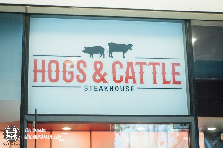 Hogs and Cattle 21