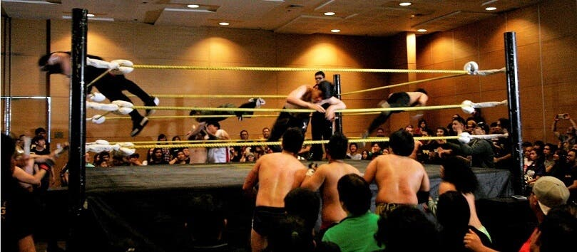 PWR-Path-of-Gold-Top-Five-Things-You-Missed-Out-When-in-manila-dive
