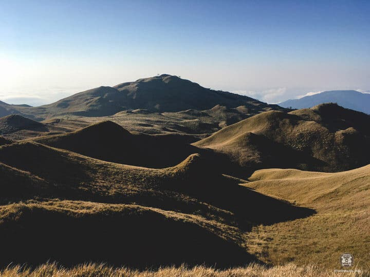 Peak Pursuits- Pulag13
