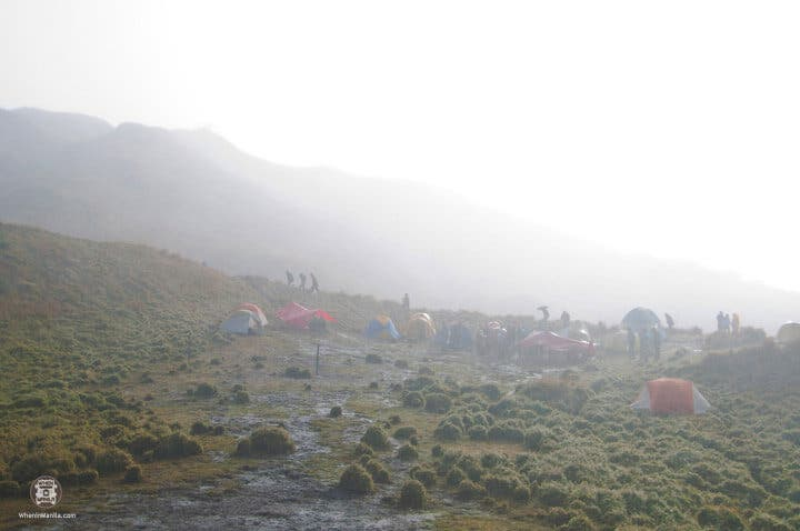 Peak Pursuits-Pulag15