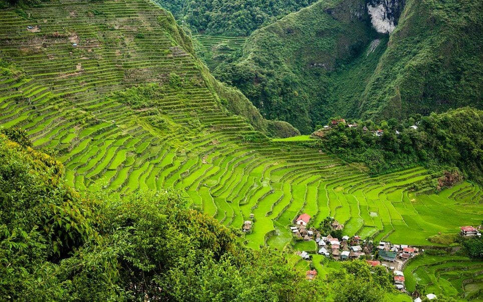 Rice terraces in Banaue, the Philippines.