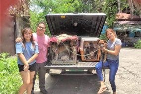 Bamba Conception Meycauayan Dog Pound Rescue 3