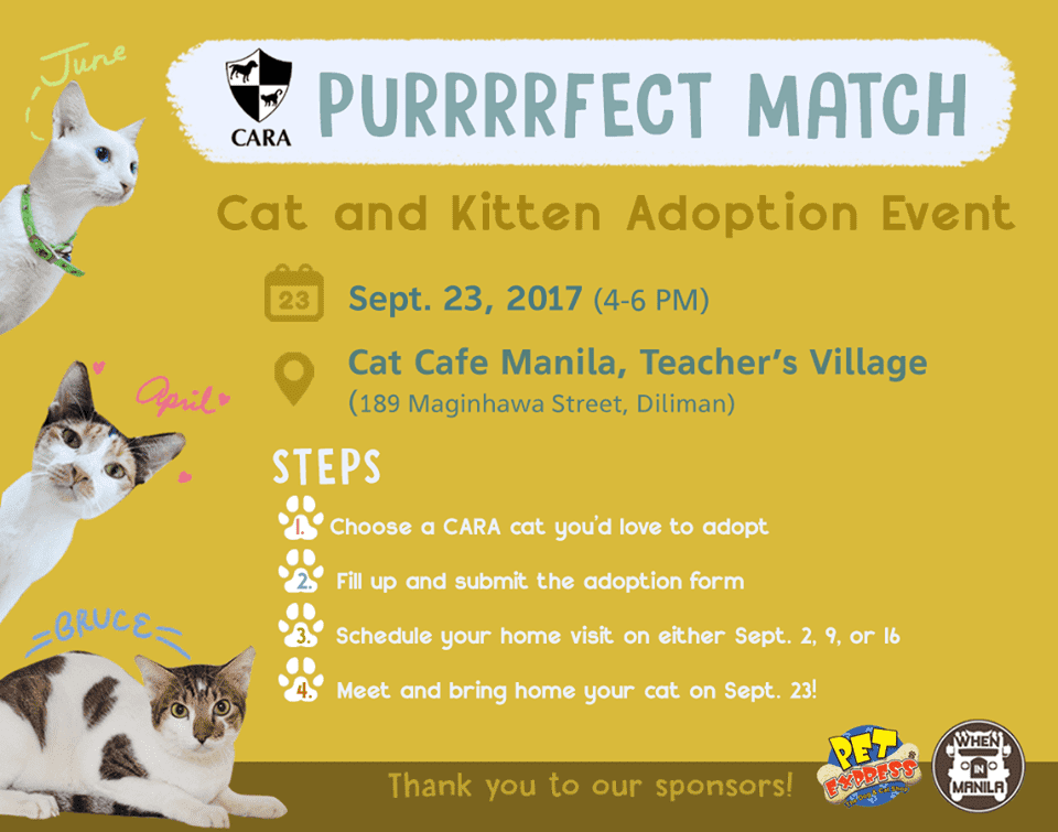 Purrfect Match - CARA Welfare Philippines