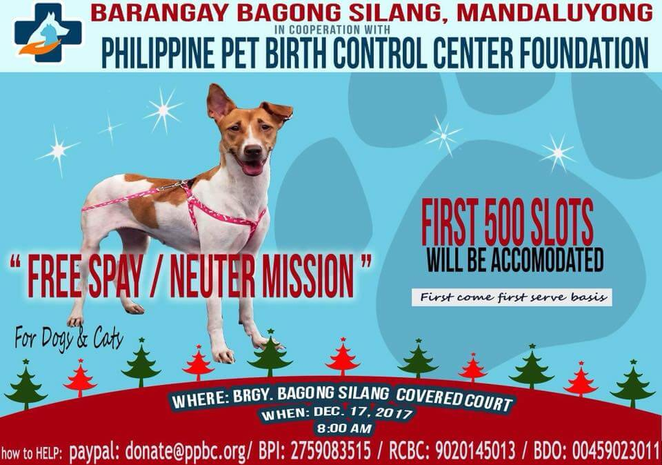 FREE-Spay-Neuter-for-500-Pets - Philippine Pet Birth Control Center in Mandaluyong