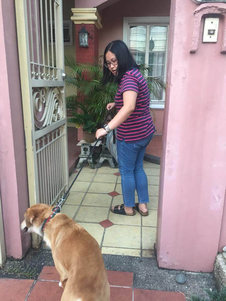 SUCCESS! Louie, the Technohub Furbaby, is Going Home