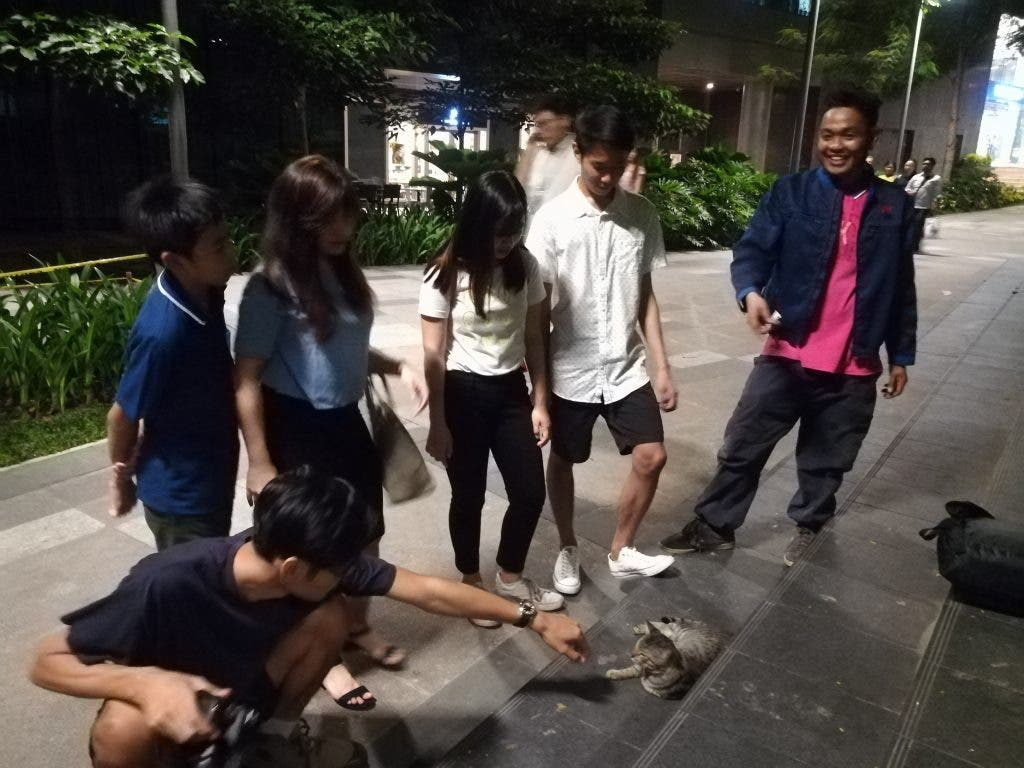 Mr. Ochi, the mystery man who has been feeding and taking care of the BGC cats