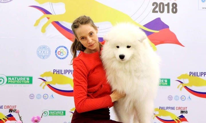 Philippine-Circuit-2018-dog-show
