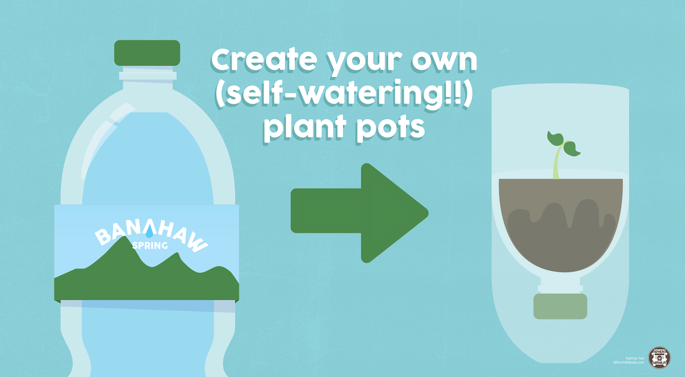 how do self watering pots work with Must Try 3 Super Easy Ways To Recycle Plastic Bottles on Self Watering Pots For Rooftop Garden as well 408983209880512572 moreover Must Try 3 Super Easy Ways To Recycle Plastic Bottles likewise Sips likewise Index.