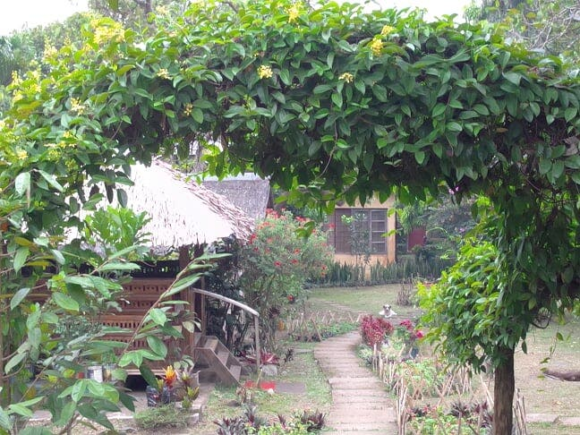 Welcome to Hangin Garden Tagaytay