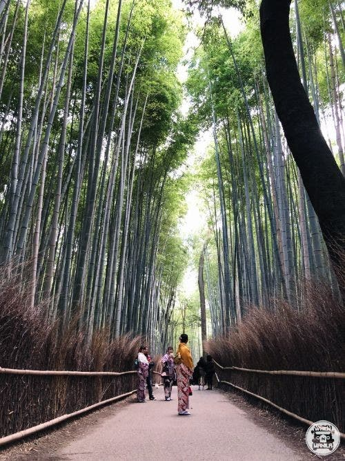 Kyoto Travel Guide for Filipinos